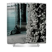 Land Meets Water Nature Photograph Shower Curtain