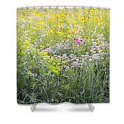 Land Of Flowers Shower Curtain
