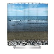 Land Sea And Ocean Background Shower Curtain