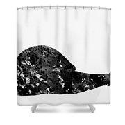Land Snail-black Shower Curtain