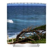 Land Wind And Sea Shower Curtain