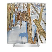 Landing Claws Shower Curtain
