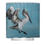 Landing Gear Activated Shower Curtain