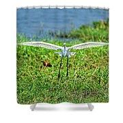 Landing Gear Down Shower Curtain