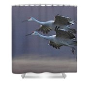 Landing Gear Down Shower Curtain