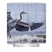 Landing With The Wave Shower Curtain