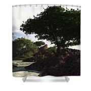 Landscape 082510 Shower Curtain