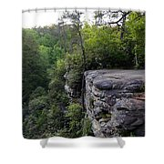 Landscape And Trees Shower Curtain