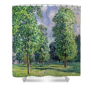 Landscape At Sevres Shower Curtain by Alfred Sisley