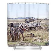 Landscape Galisteo Nm A10i Shower Curtain