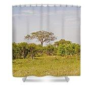 Landscape In Botswana Shower Curtain