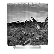 Landscape In Contrast Shower Curtain