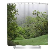 Landscape In Fog Shower Curtain