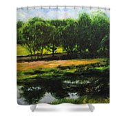 Landscape In North Wales Shower Curtain