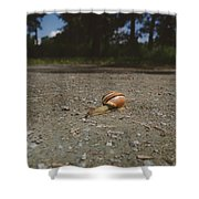 Landscape Of The Snail Shower Curtain