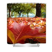 Landscape Trees Park Art Prints Autumn Fall Leaves Baslee Troutman Shower Curtain