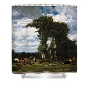 Landscape With Cattle At Limousin Shower Curtain