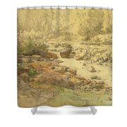 Landscape With Rocks In A River Shower Curtain