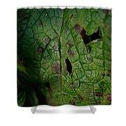 Languid Leaf Shower Curtain
