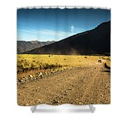 Lanin National Park Shower Curtain