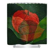 Lantern Flower Shower Curtain