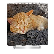 Lanzarote Ginger Shower Curtain