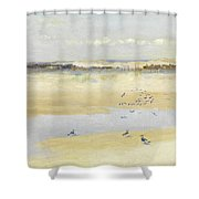 Lapwings By The Sea Shower Curtain