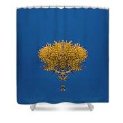 Larch Kaleidoscope 3 Shower Curtain