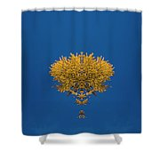 Larch Kaleidoscope 3 Shower Curtain