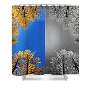 Larches Color To Black And White Reflection Shower Curtain