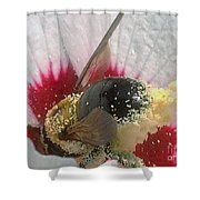 Large Bumble Bee In Flower Shower Curtain