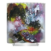 Large Color Fever Art23 Shower Curtain