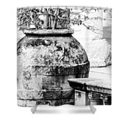 Large Flowerpot - Black And White Shower Curtain