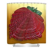 Large Strawberry Scallop Shower Curtain