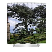 Large Trees At Chateau De Chaumont Shower Curtain