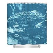 Largemouth Bass 8 Shower Curtain