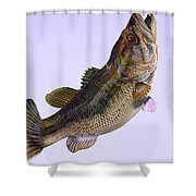 Largemouth Bass Side Profile Shower Curtain