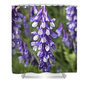 Larkspur Shower Curtain
