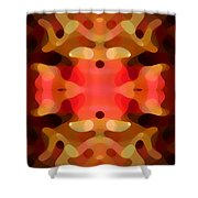 Las Tunas Abstract Pattern Shower Curtain