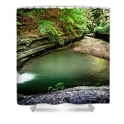 Lasalle Canyon Pool Shower Curtain