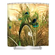 Lash Line Shower Curtain
