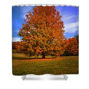 Last Call Of Fall Shower Curtain