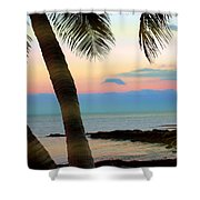 Last Evening Lights Shower Curtain