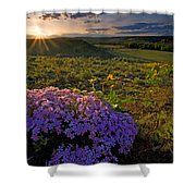 Last Light Of Spring Shower Curtain