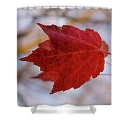 Last Of The Leaves Nature Photograph Shower Curtain