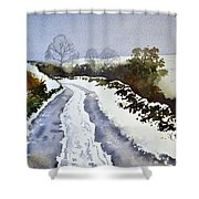 Last Of The Snow Shower Curtain