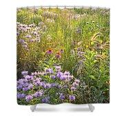 Last Rays Of Sun Light Wildflowers In Moraine Hills Sp Shower Curtain