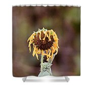 Last Sunflower Shower Curtain