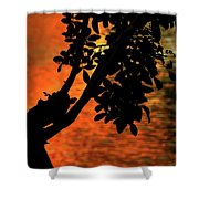 Late Afternoon Lake Reflection Shower Curtain