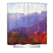 Late Afternoon Light Shower Curtain